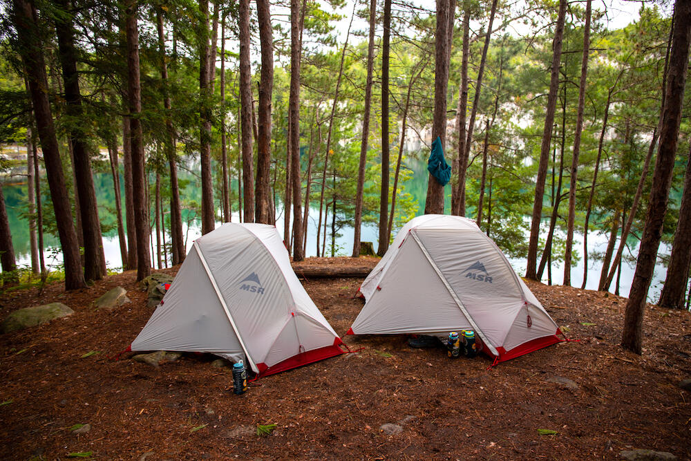 Two small tents on a flat campsite beside trees and lake.