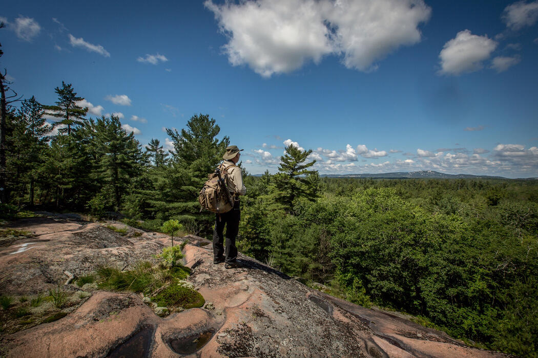 Man with a backpack standing on a rock outcropping in a forest.