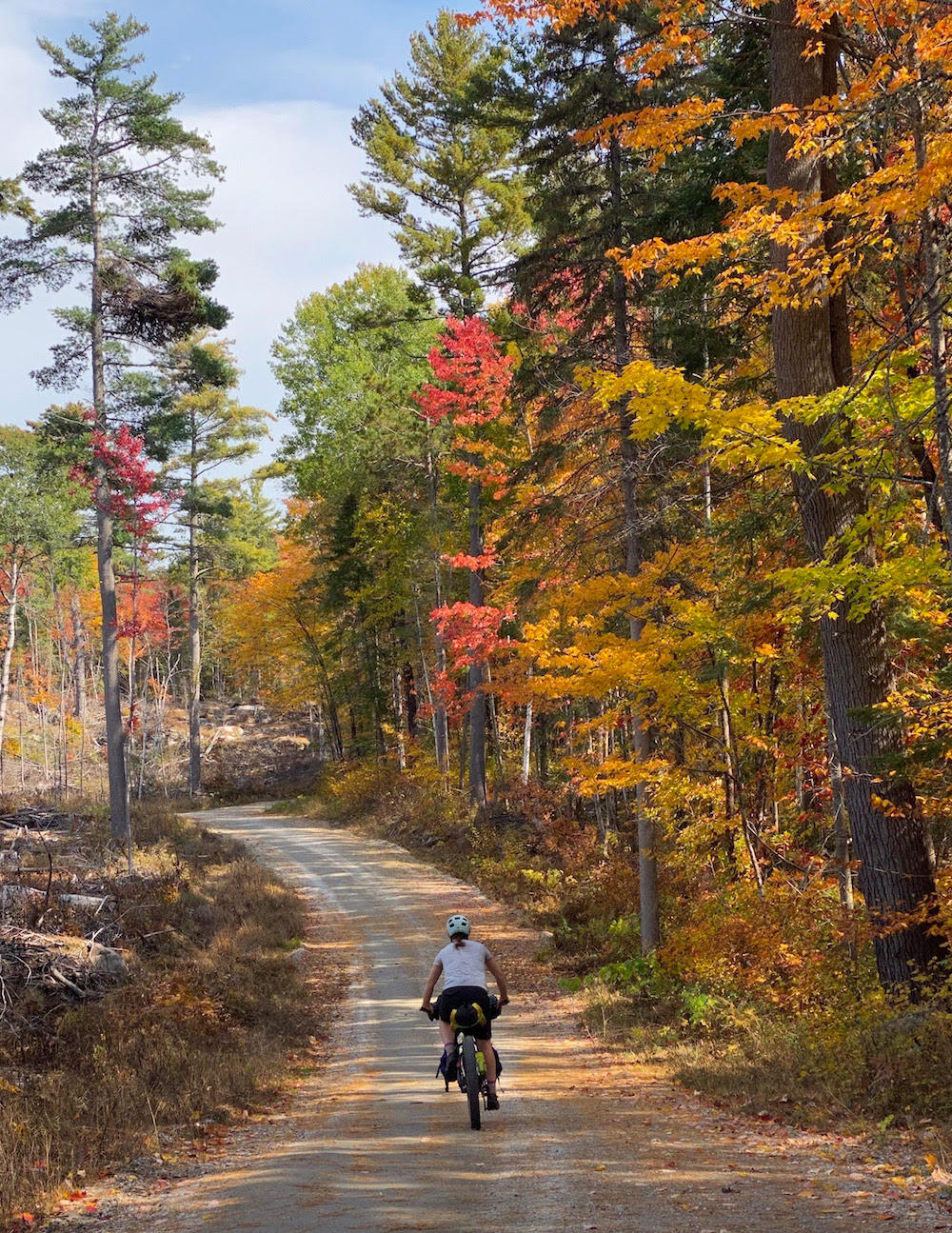 A cyclist riding on a gravel road in forest in autumn.