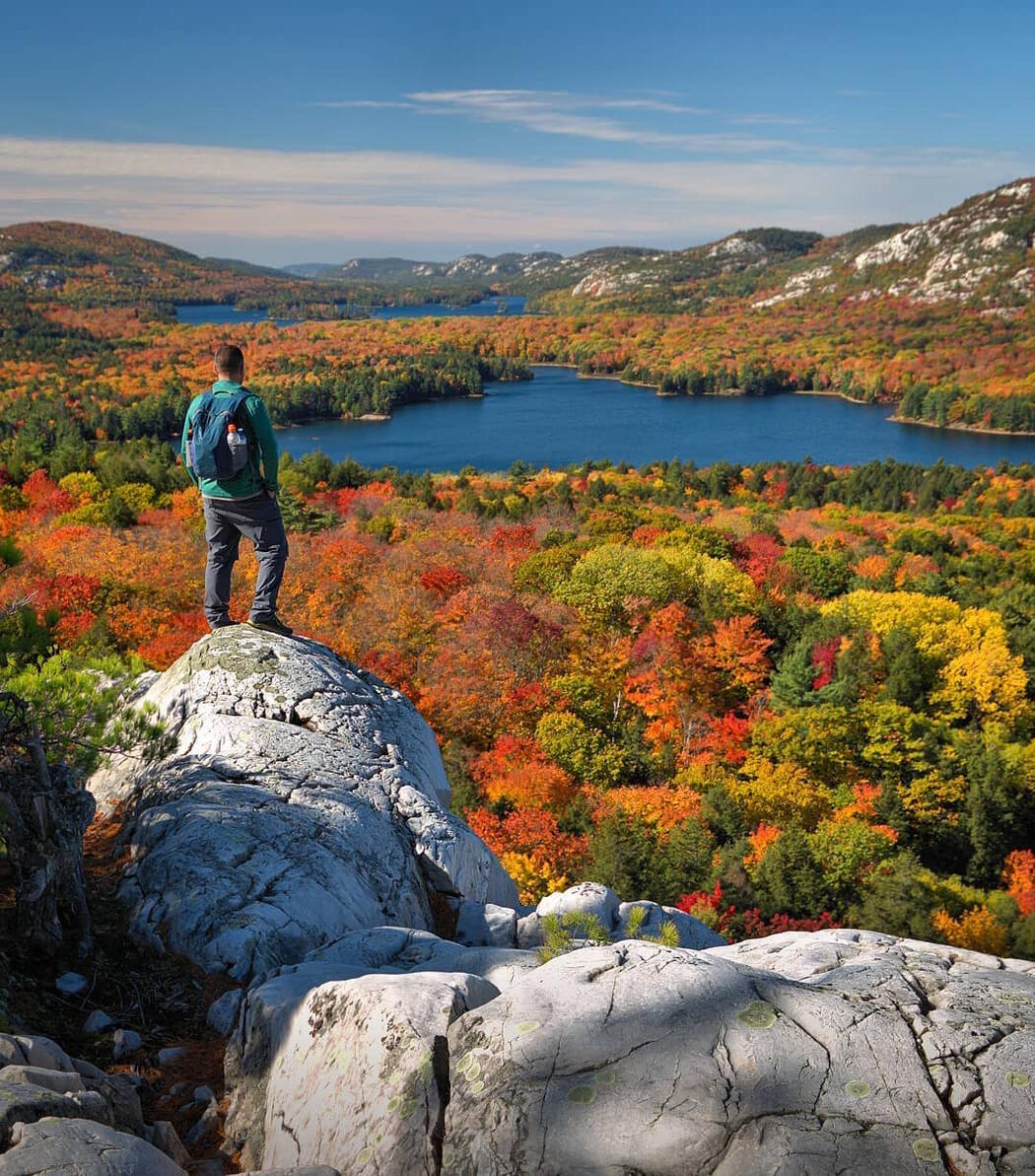 Man standing on a rock lookout viewing colourful trees and lake in the distance.