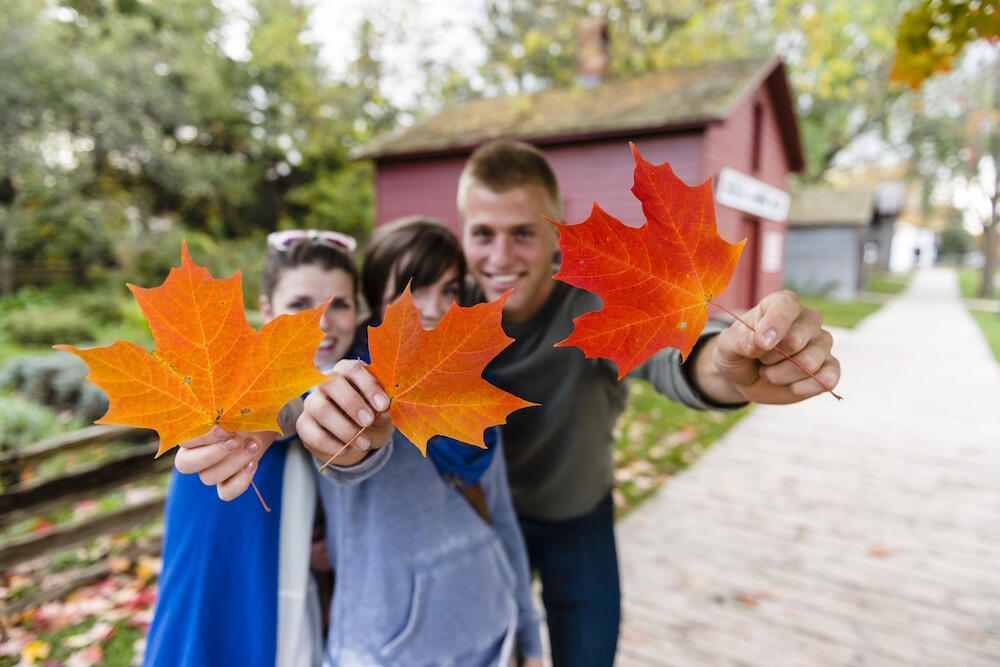 Three kids holding colourful maple leaves.