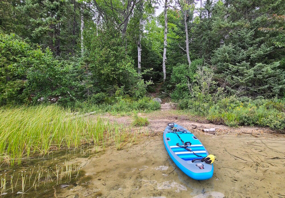 Blue paddleboard on a beach with a path leading into the forest