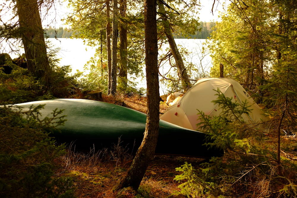 Green canoe resting on lakeside campsite with tent