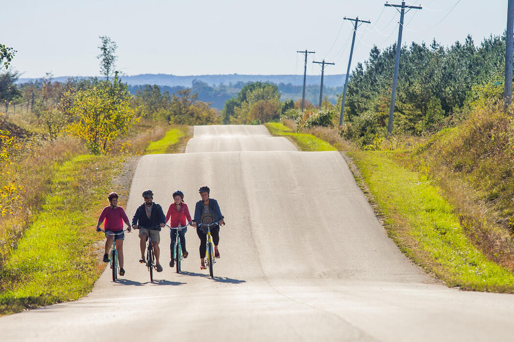Four cyclists riding on a road with wavy hills.