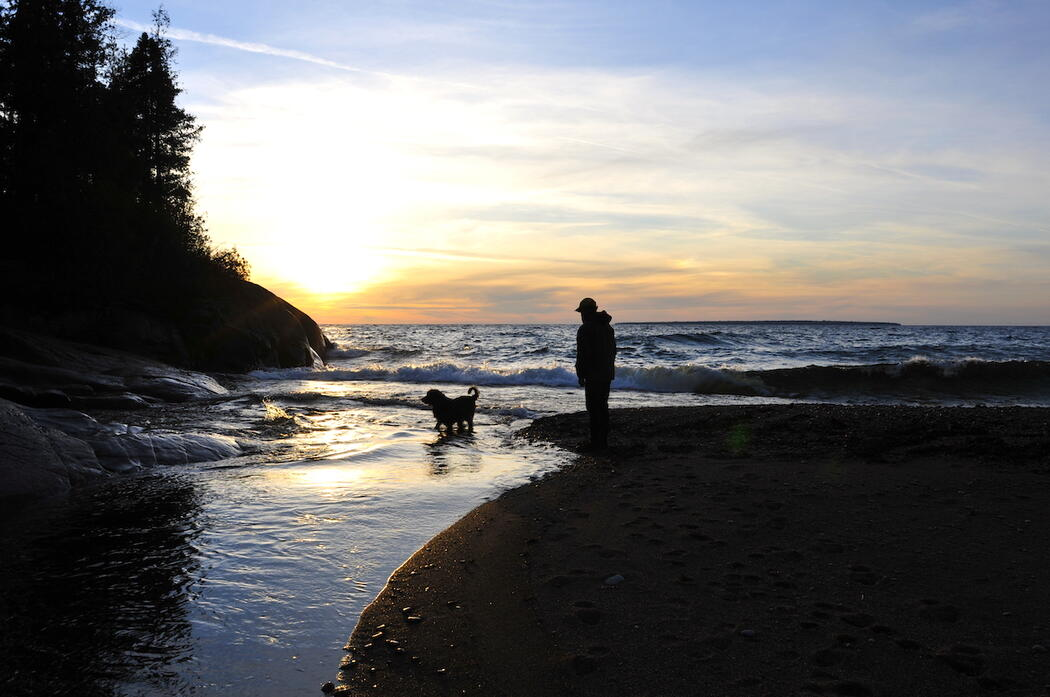 Dog wading in river at sunset with man standing on a beach