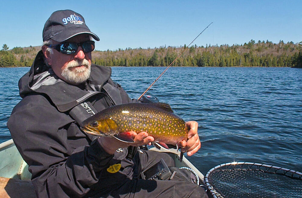 brook-trout-fishing-6