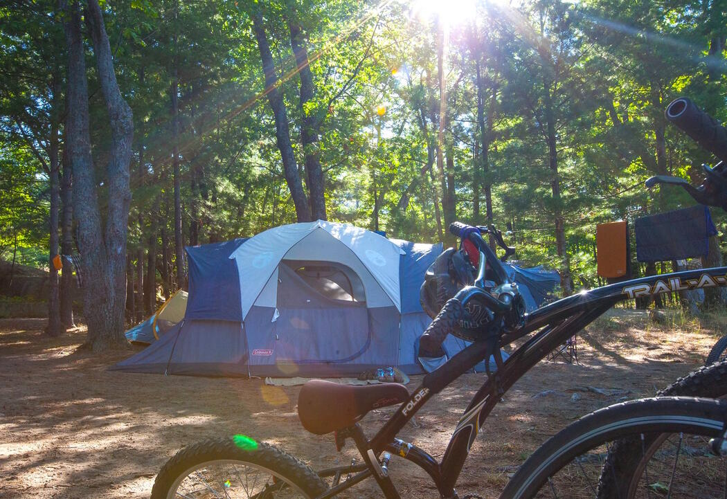 Tent and bicycles at a campsite.