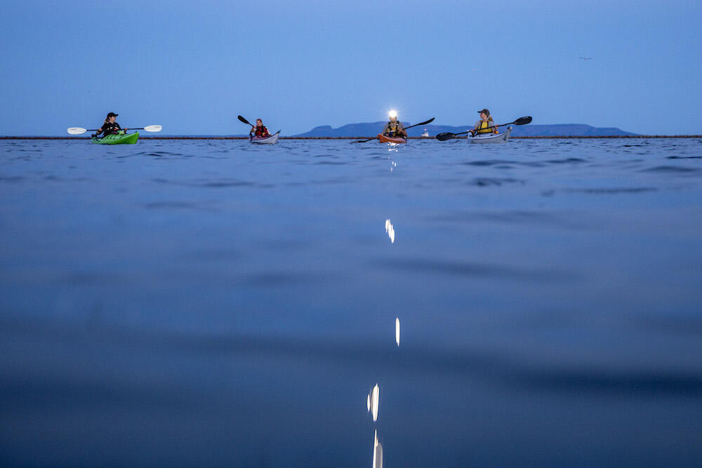Kayakers with headlamps on the water