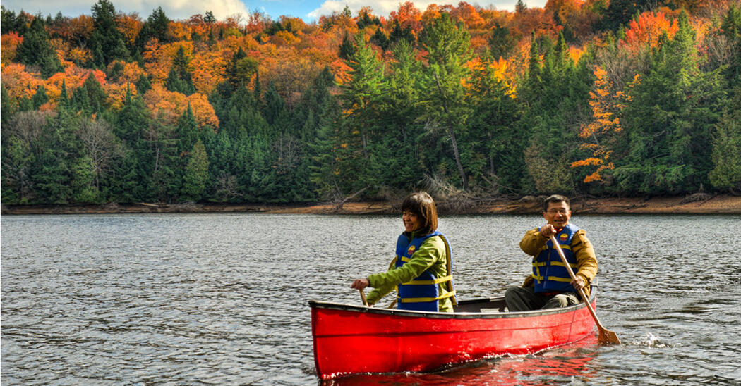 Two people paddling a red canoe in front of a forest of coloured leaves.