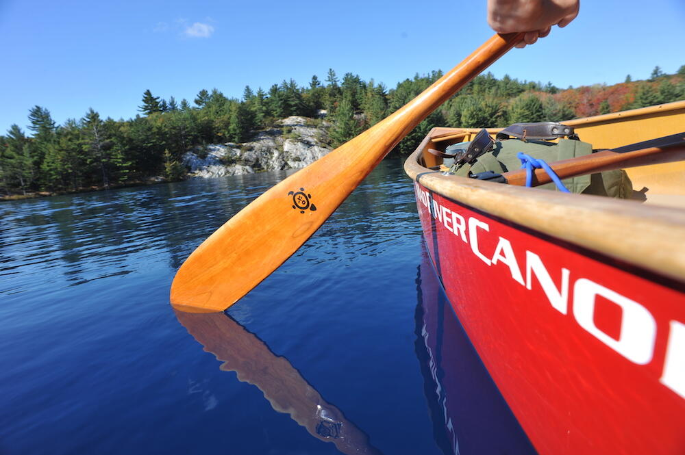 Canoe paddle being dipped in the water next to red canoe