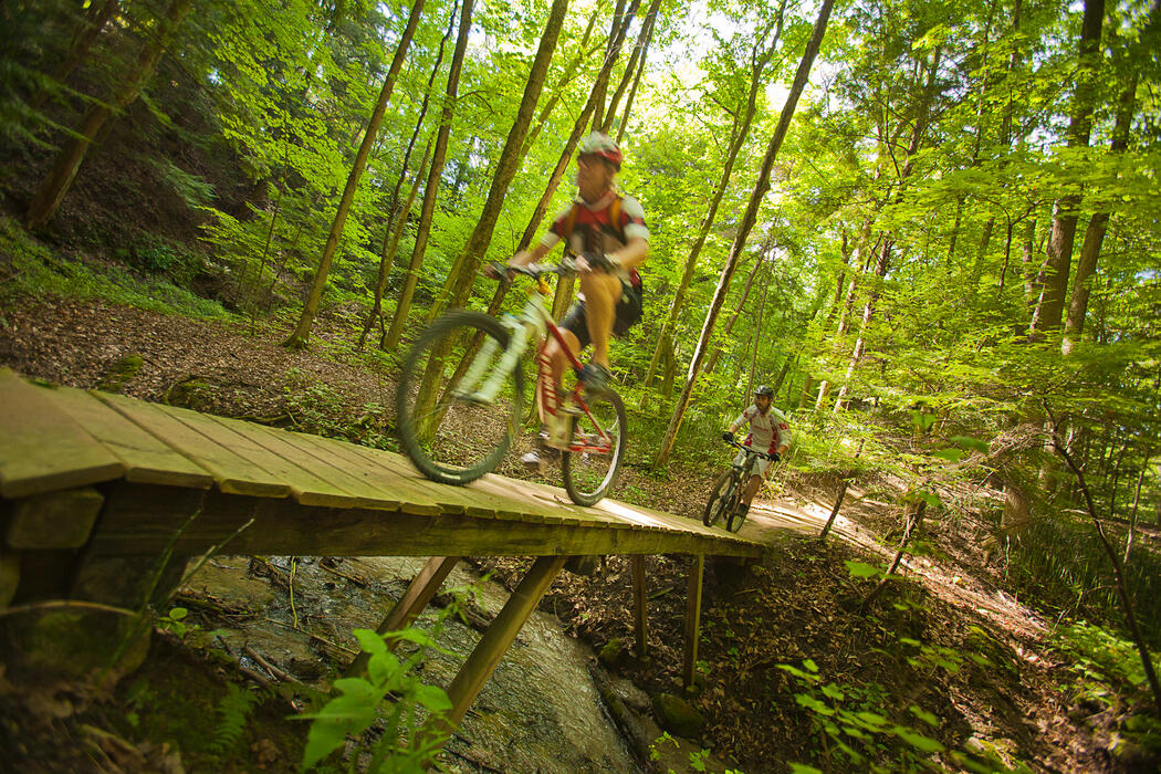 Two cyclists riding on a wooden bridge in a forest.