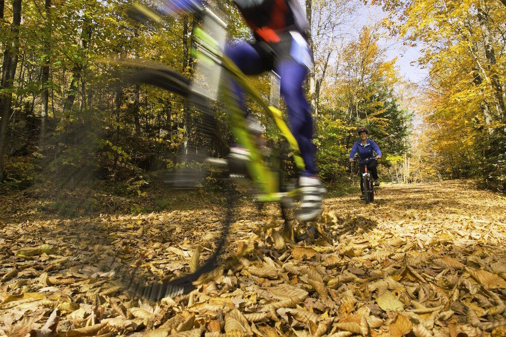 Bike riding on a forest trail in autumn.