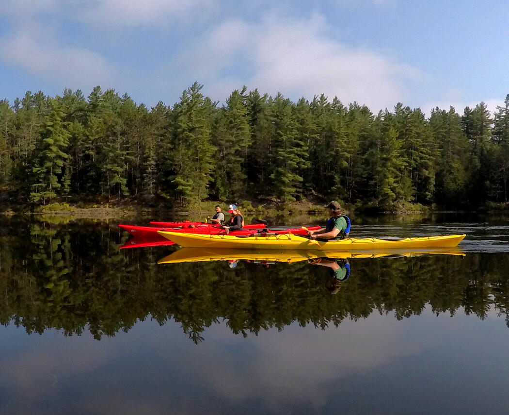 Guided Kayaking with Shockwaves Paddle Adventures