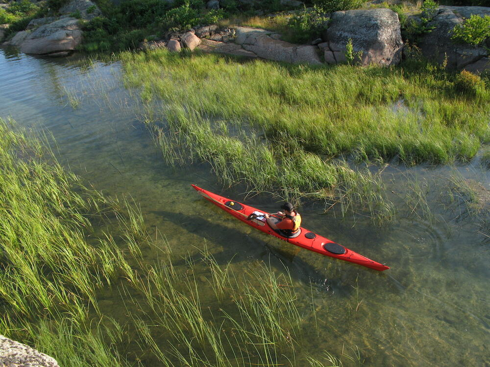 Person paddling red kayak through long grasses in the water
