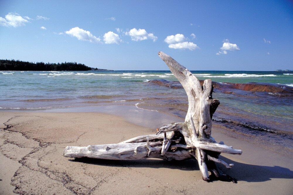 Piece of driftwood on the beach at Lake Superior