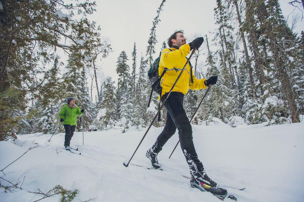 Two people cross country skiing through the woods.