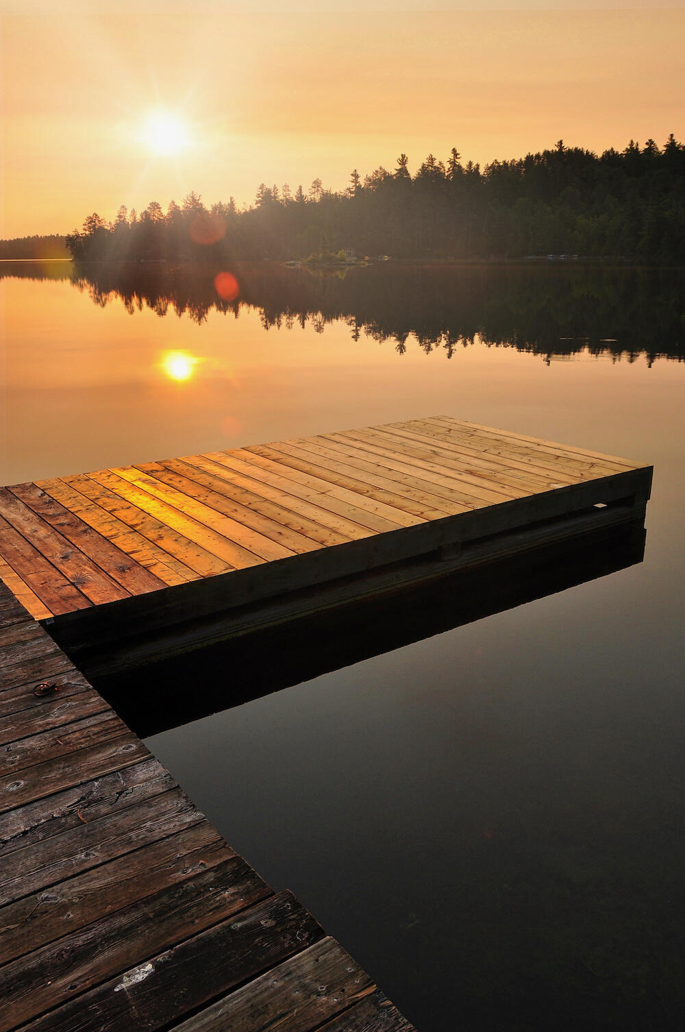 Dock on a lake with trees at sunrise