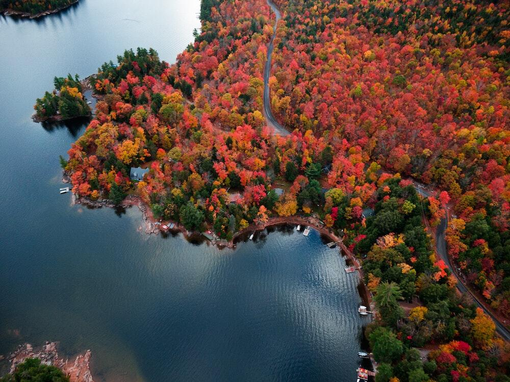 Overhead view of lake surrounded by colourful forest.