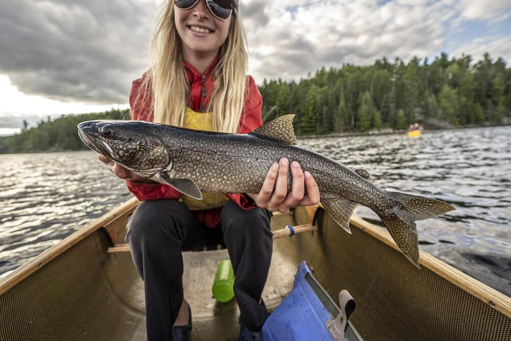 Teaming the depths, Quetico is filled with Lake Trout. Photo: David Jackson