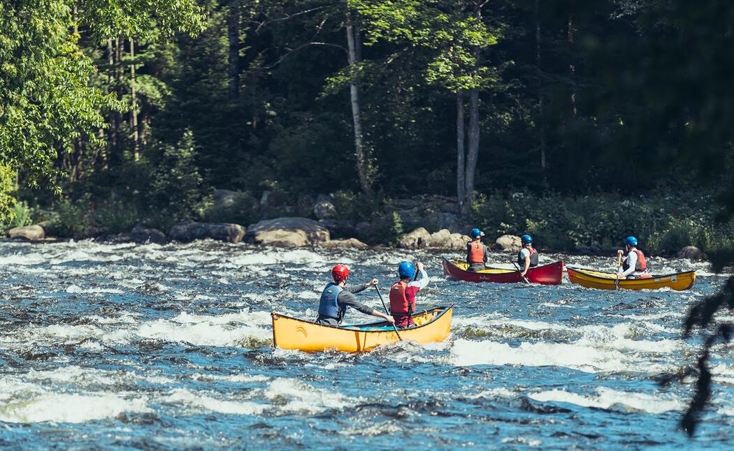 Discover the thrill of whitewater paddling.
