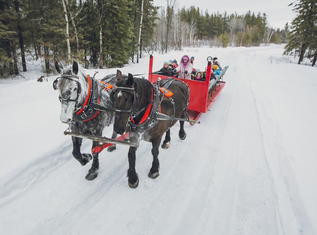 two horses pulling a red sleigh with lots of kids on it.