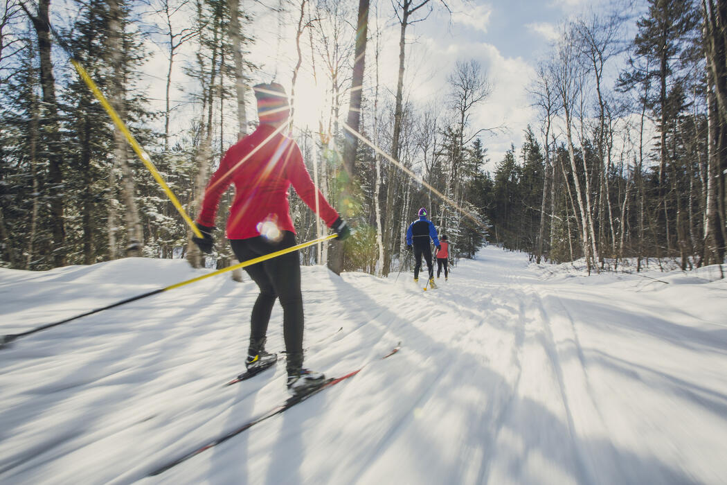 Three people cross country skiing on groomed trail