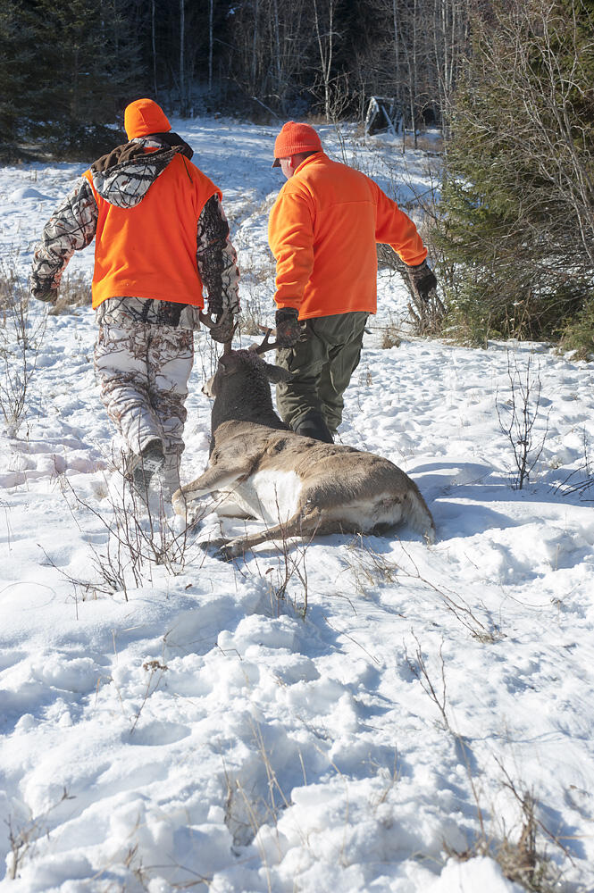 hunters with harvested deer
