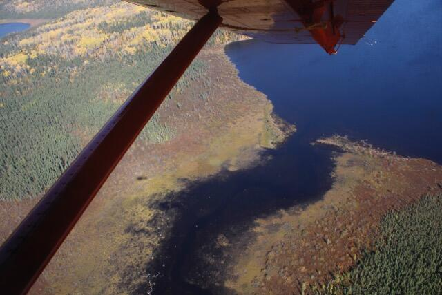aerial view from floatplane