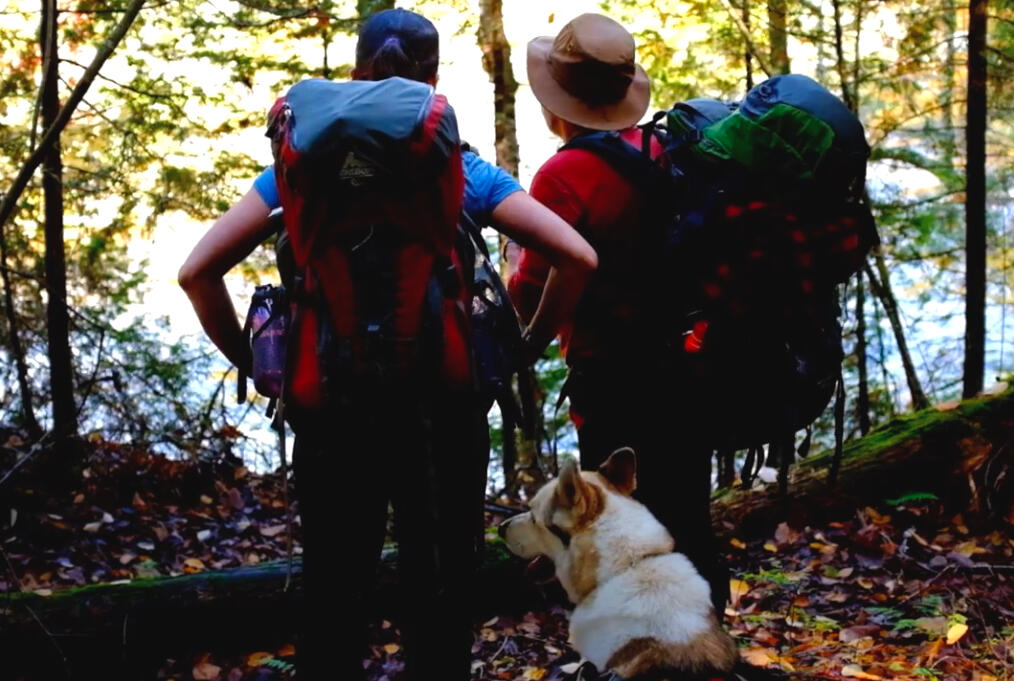 Two hikers carrying  small backpacks looking into forest