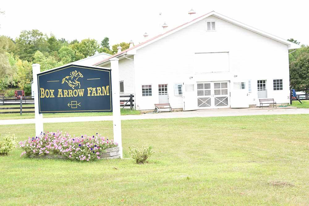 big arrow farm