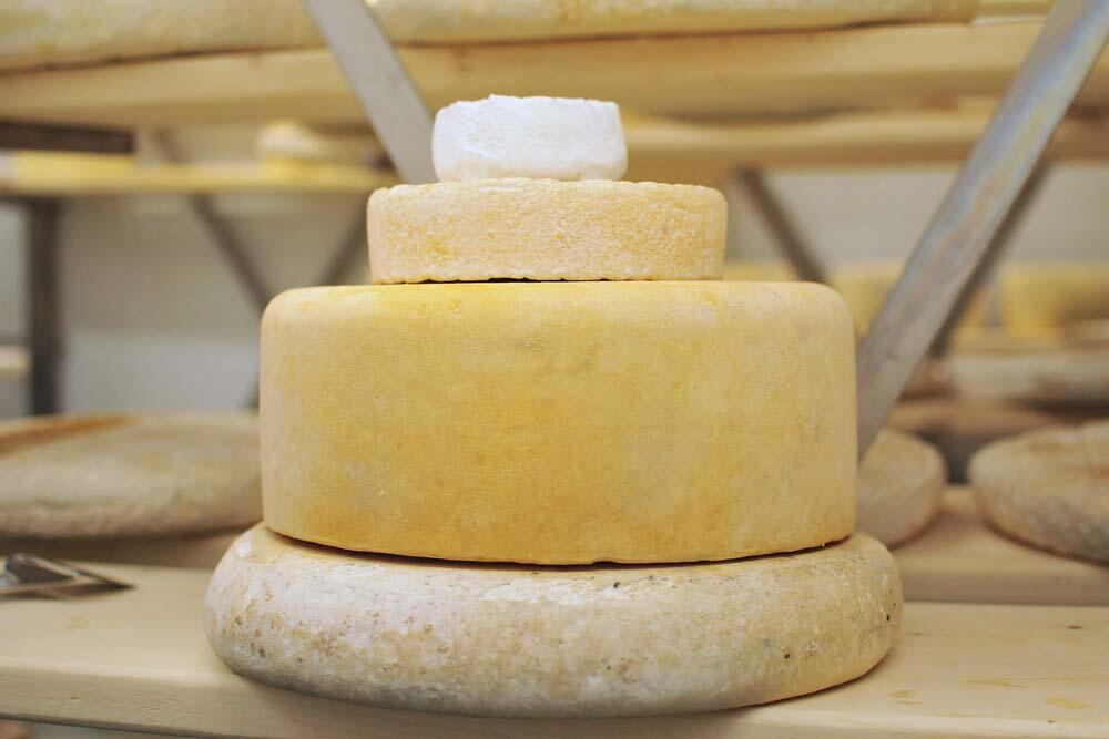 kapuskoise cheese