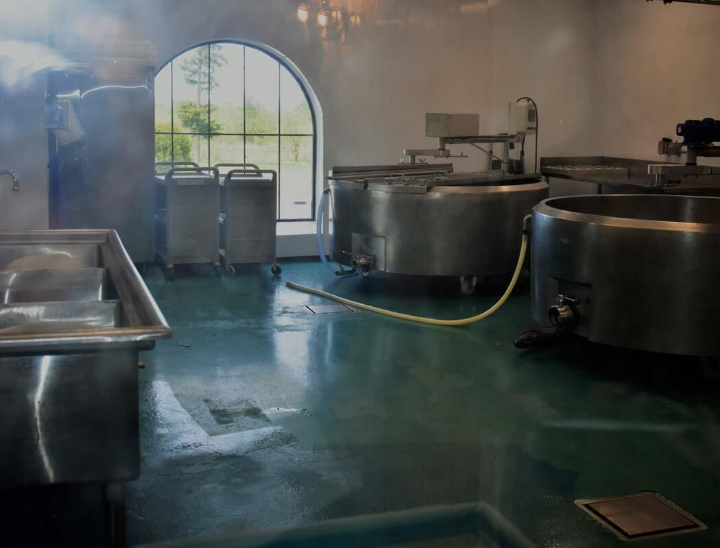 cheese making vats