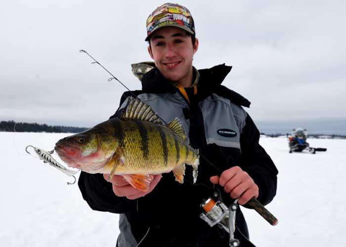 young ice angler holding perch