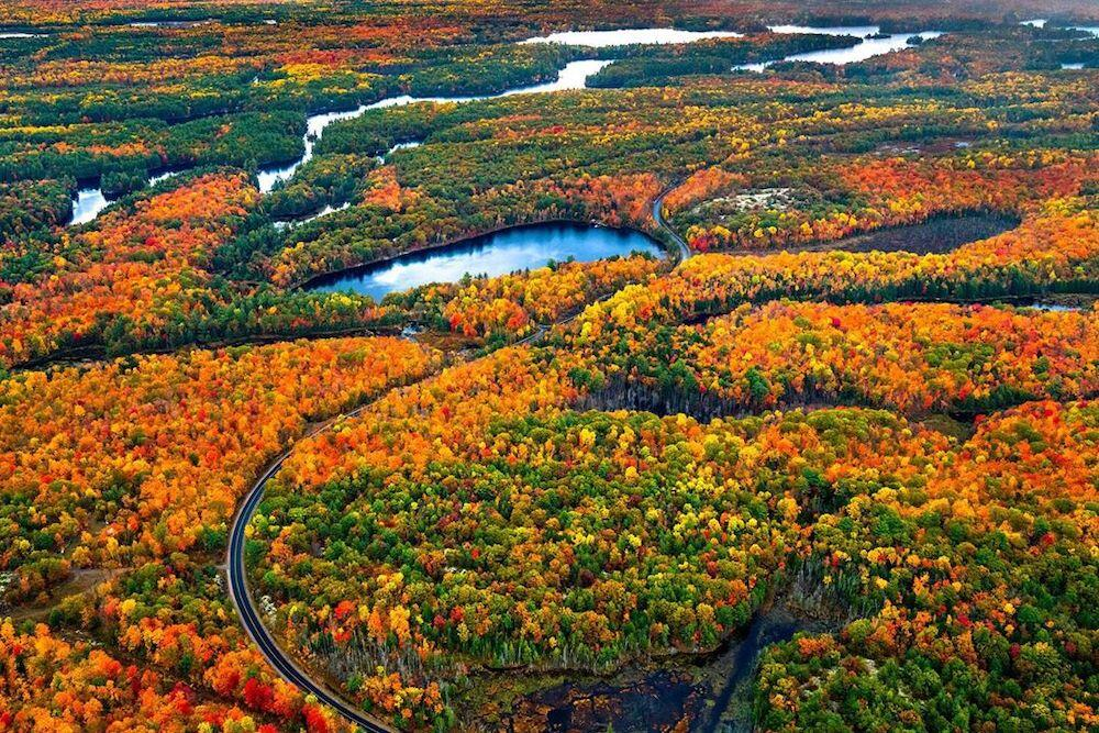 Overhead view of fall colours and lakes