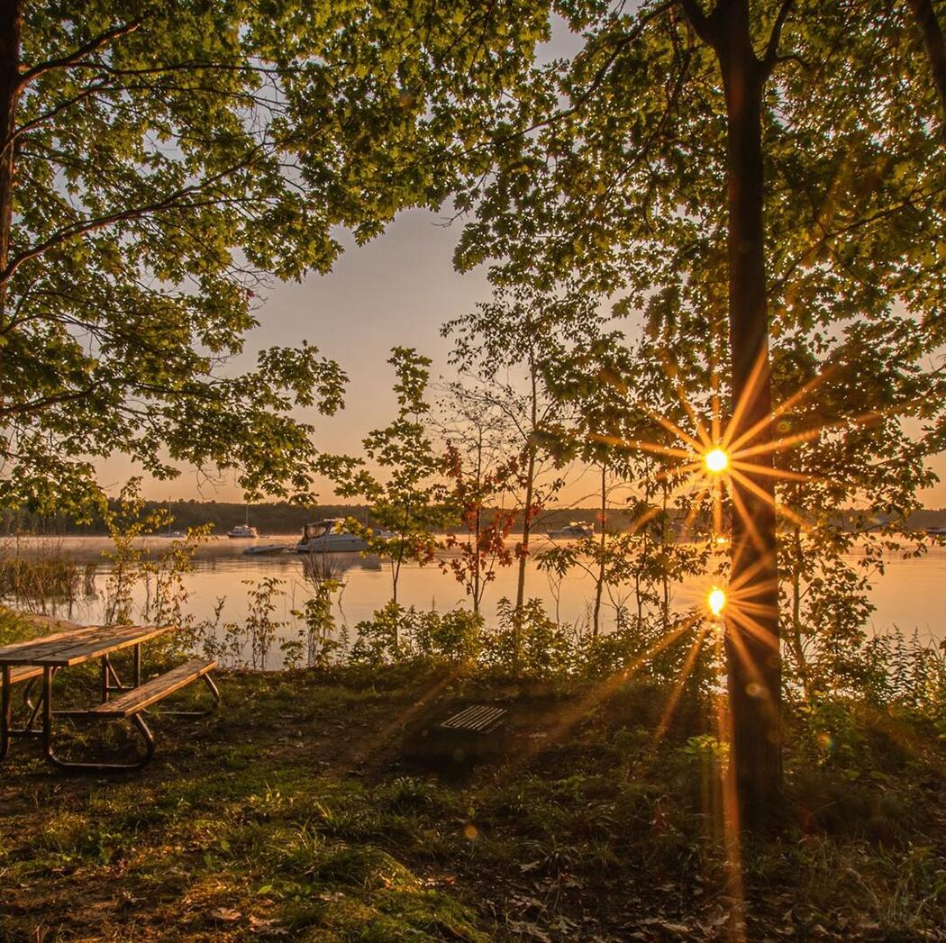 Beautiful sunrise shining through trees over a lake.