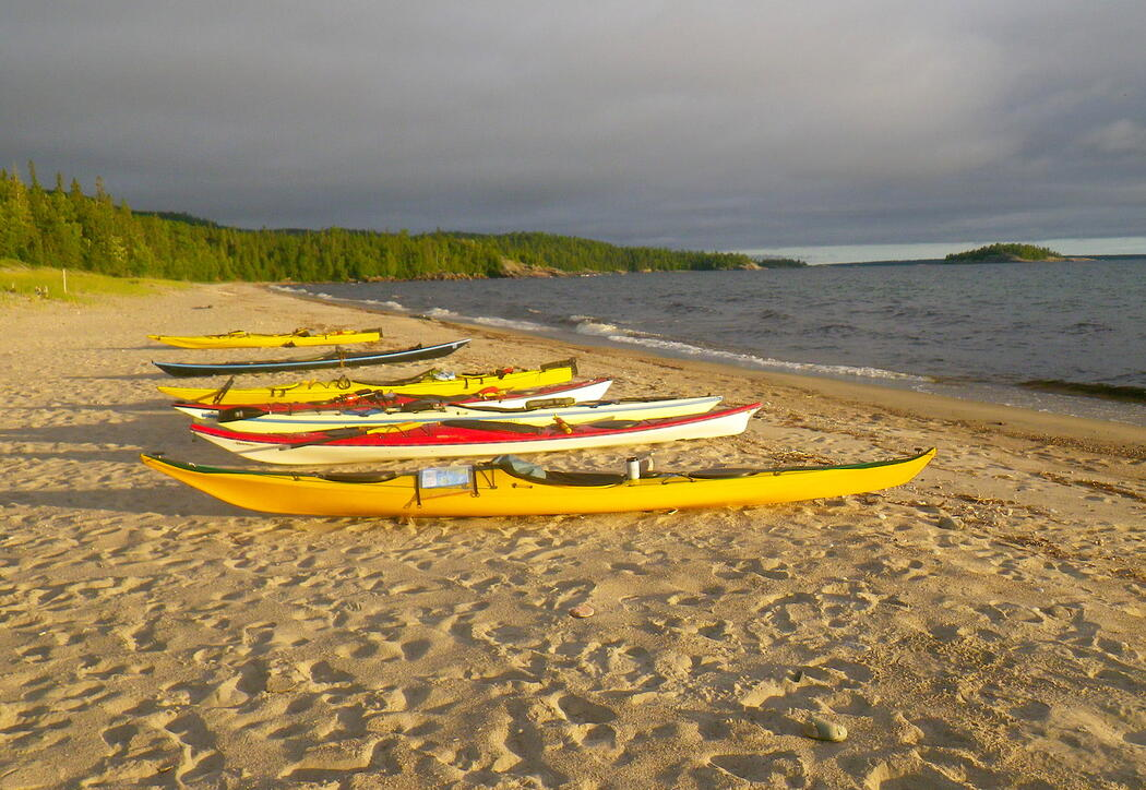 7 sea kayaks lined up on sand beach