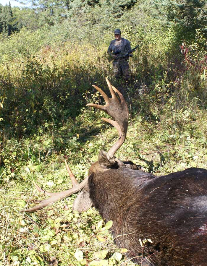 hunter with harvested moose