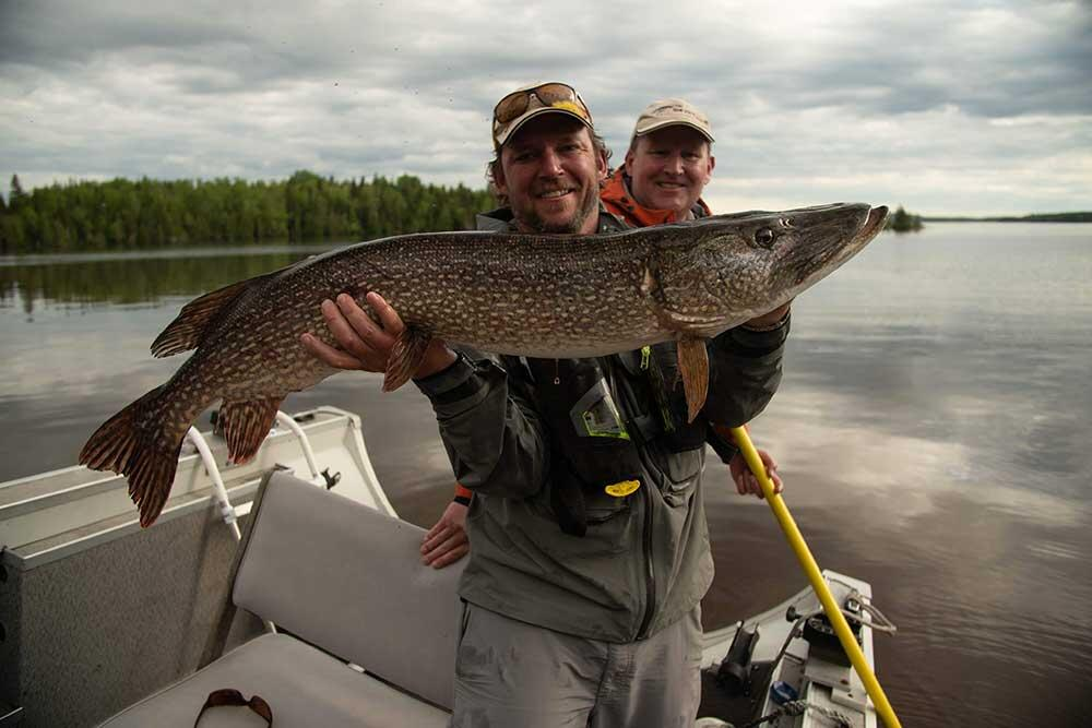 two anglers with northern pike