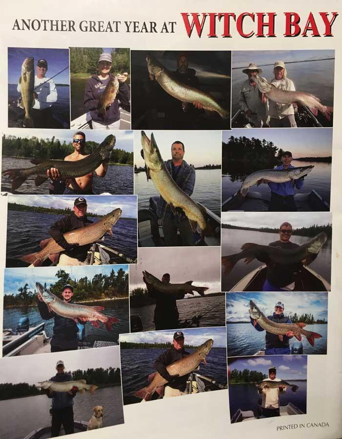 witch bay camps musky