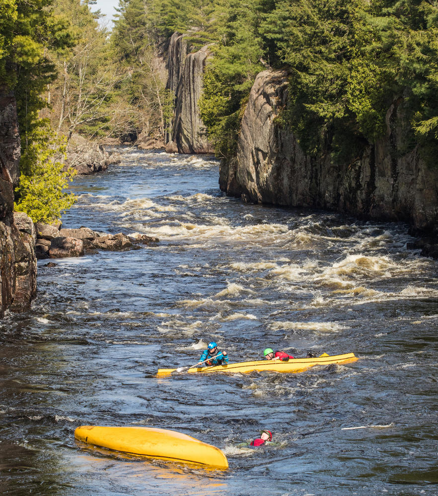 Two overturned yellow canoes with paddlers swimming along side in river rapids