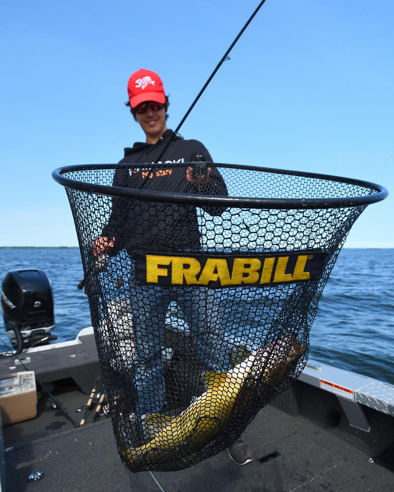 netting-walleye