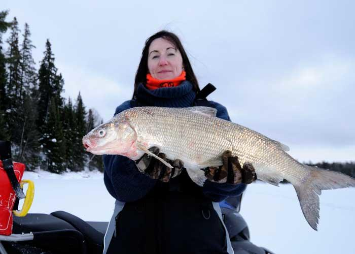 woman ice angler with whitefish