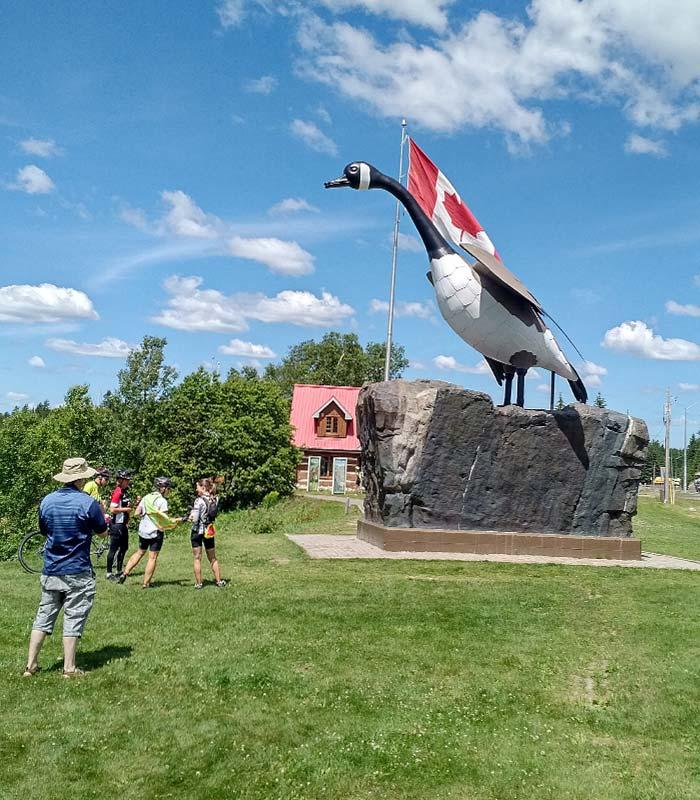 new wawa goose monument